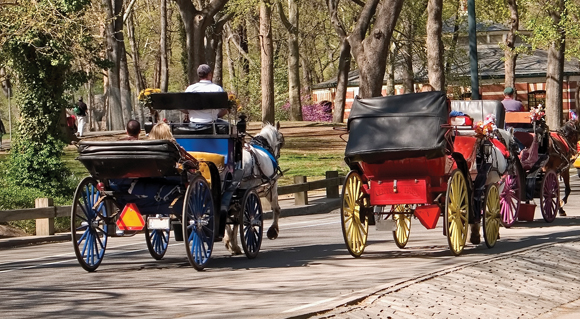 OP-ED: Keep Central Park Carriage Horses on the Good Path