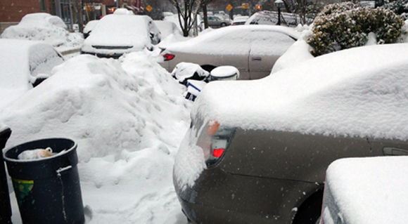 BERRY BITS: Snow Parking obstacle course