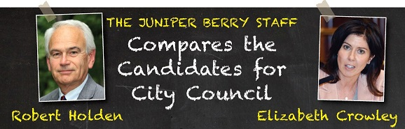 Comparing the 2017 Candidates for City Council