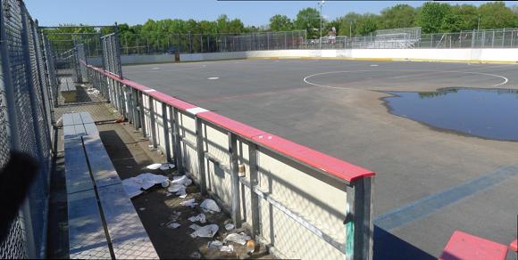 BERRY BITS: Mafera & Juniper hockey rinks to receive upgrades