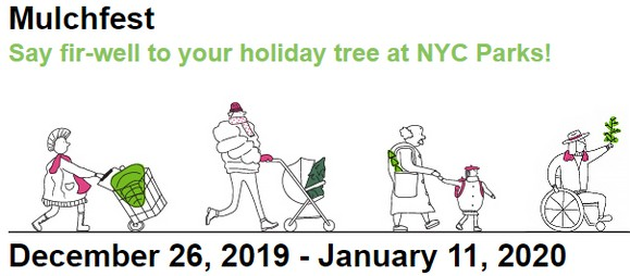 Recycle your Christmas tree at Juniper Valley Park thru Jan 11