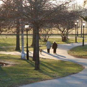 Parks Dept installs fence at Juniper to curb dog nuisances